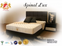 spinallux